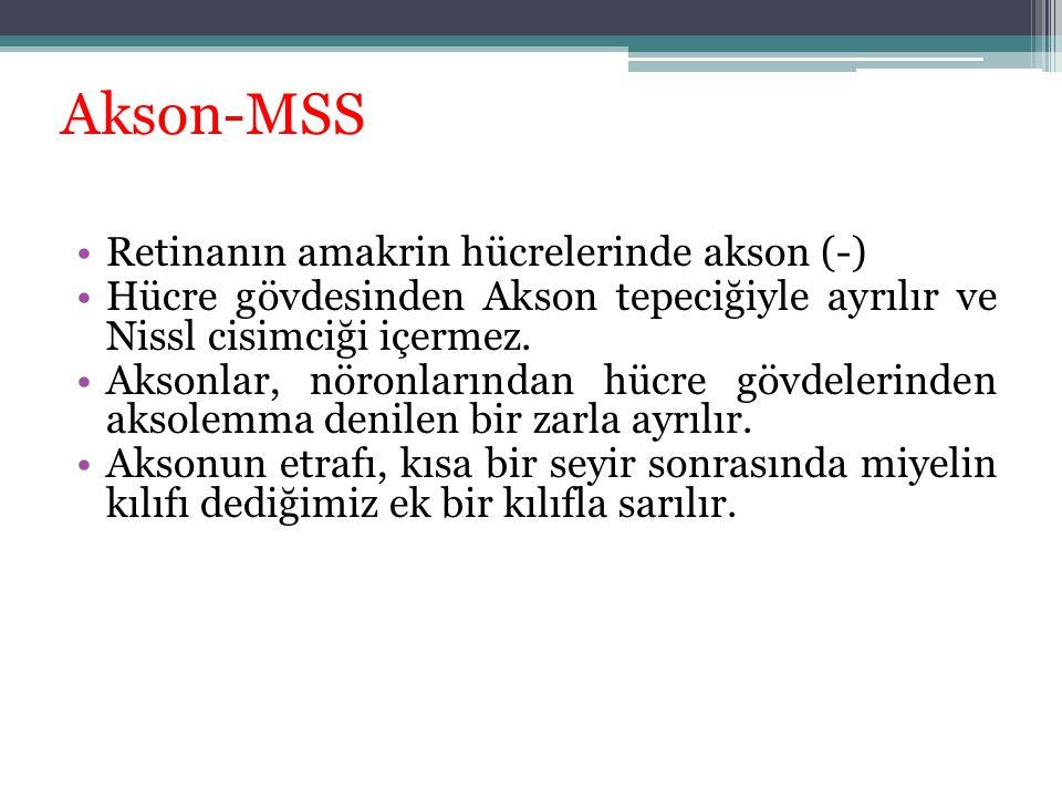 Akson-MSS Retinanın amakrin hücrelerinde akson (-) Hücre gövdesinden Akson tepeciğiyle ayrılır ve Nissl cisimciği içermez. Aksonlar, nöronlarından hüc