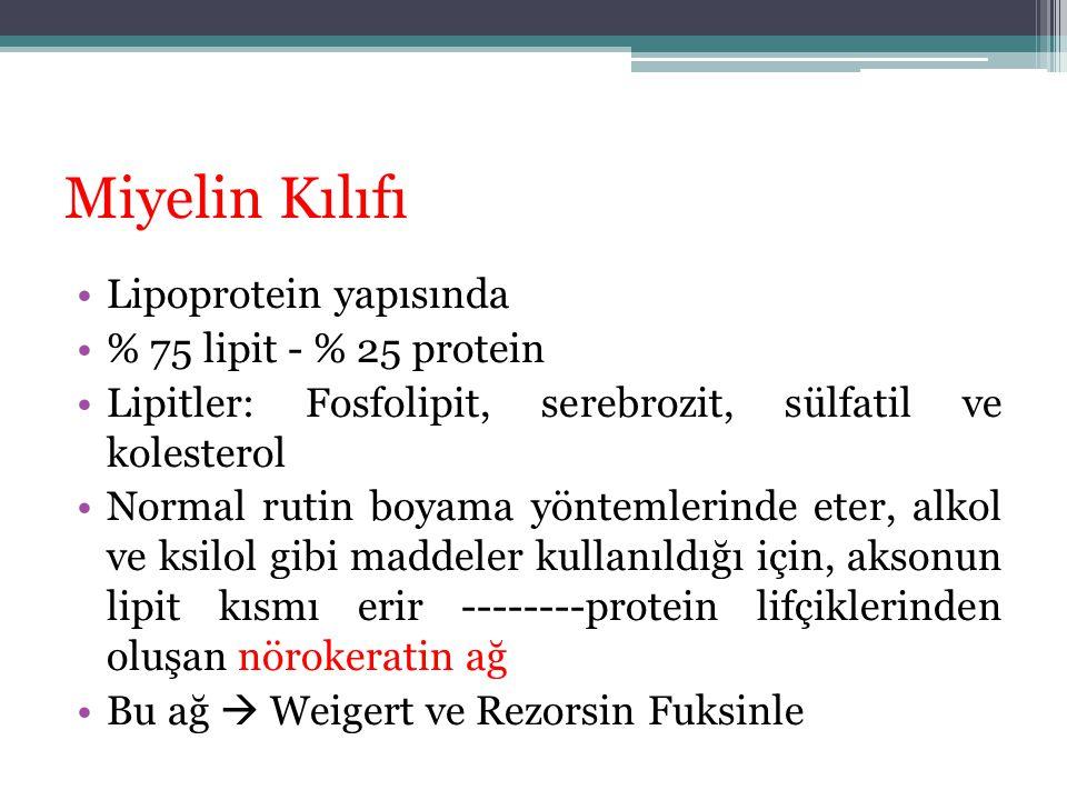 Miyelin Kılıfı Lipoprotein yapısında % 75 lipit - % 25 protein Lipitler: Fosfolipit, serebrozit, sülfatil ve kolesterol Normal rutin boyama yöntemleri
