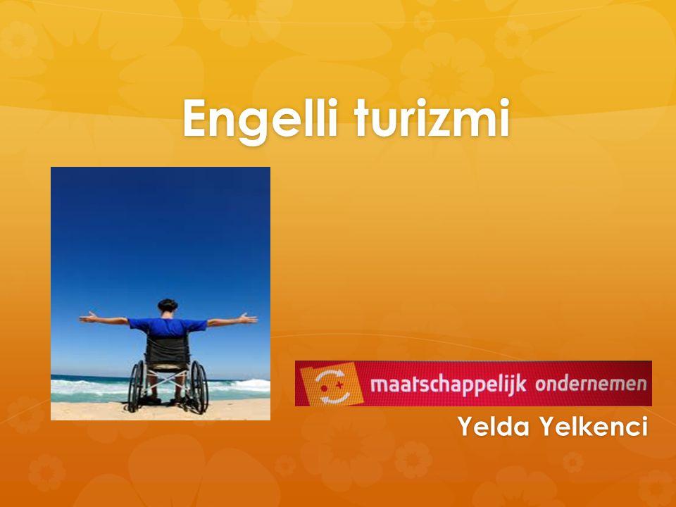 Mee - Twente  Hedef kitlesi: engelli, otistik ve kronik hastalığı olan ve yakılarına destek veren bağımsız bir kurumdur.