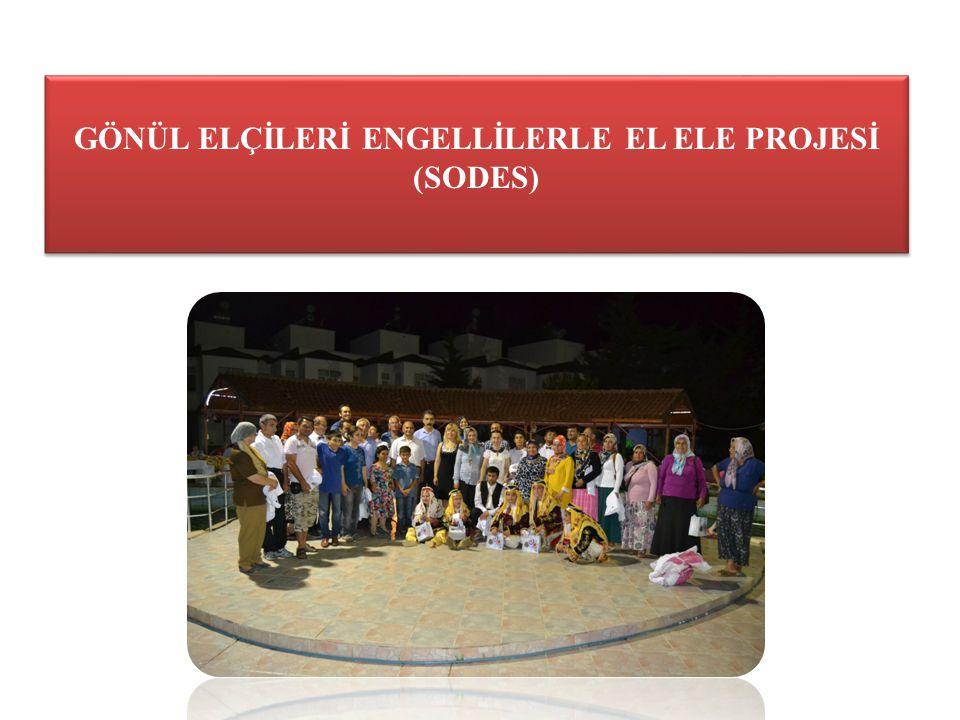 20 Kasım 2013 yılında 45 engelli vatandaşlarımızı sosyal hayata kazandırmak için 70.000 TL bütçeli Gönül Elçileri Engellilerle El Ele (SODES) projesi hazırlanmıştır.