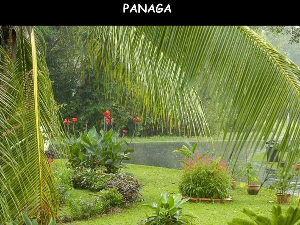PANAGA