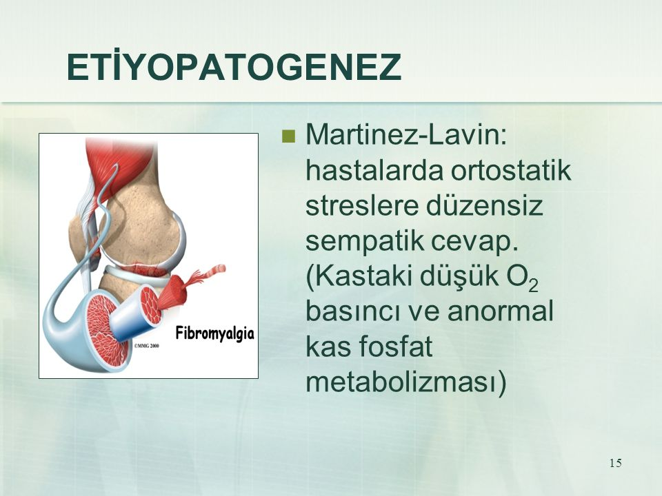 15 ETİYOPATOGENEZ Martinez-Lavin: hastalarda ortostatik streslere düzensiz sempatik cevap. (Kastaki düşük O 2 basıncı ve anormal kas fosfat metabolizm
