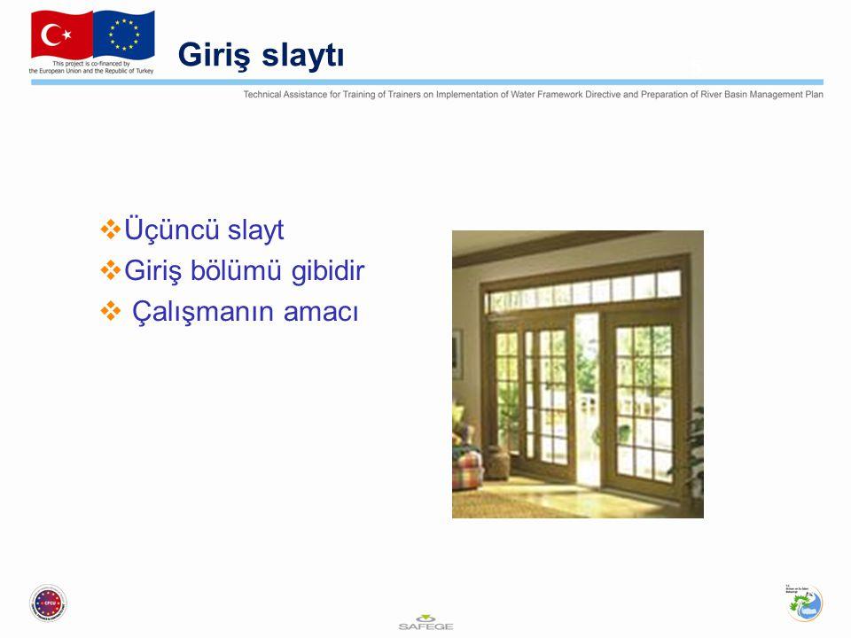 Giriş slaytı  Üçüncü slayt  Giriş bölümü gibidir  Çalışmanın amacı 5