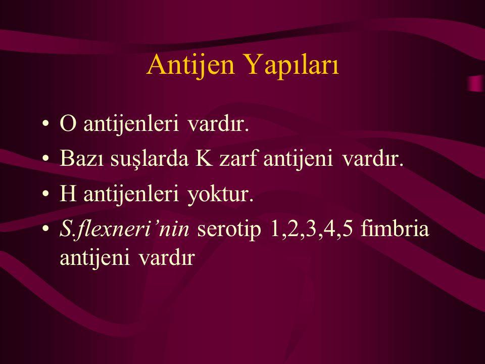 Antijen Yapıları O antijenleri vardır. Bazı suşlarda K zarf antijeni vardır. H antijenleri yoktur. S.flexneri'nin serotip 1,2,3,4,5 fimbria antijeni v