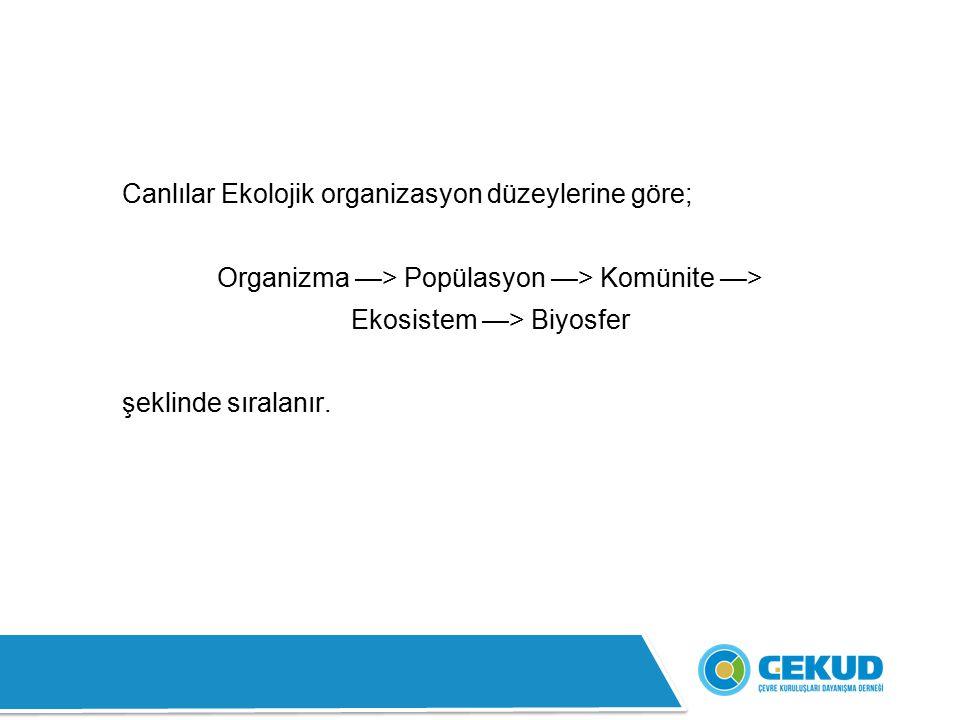 Canlılar Ekolojik organizasyon düzeylerine göre; Organizma —> Popülasyon —> Komünite —> Ekosistem —> Biyosfer şeklinde sıralanır.