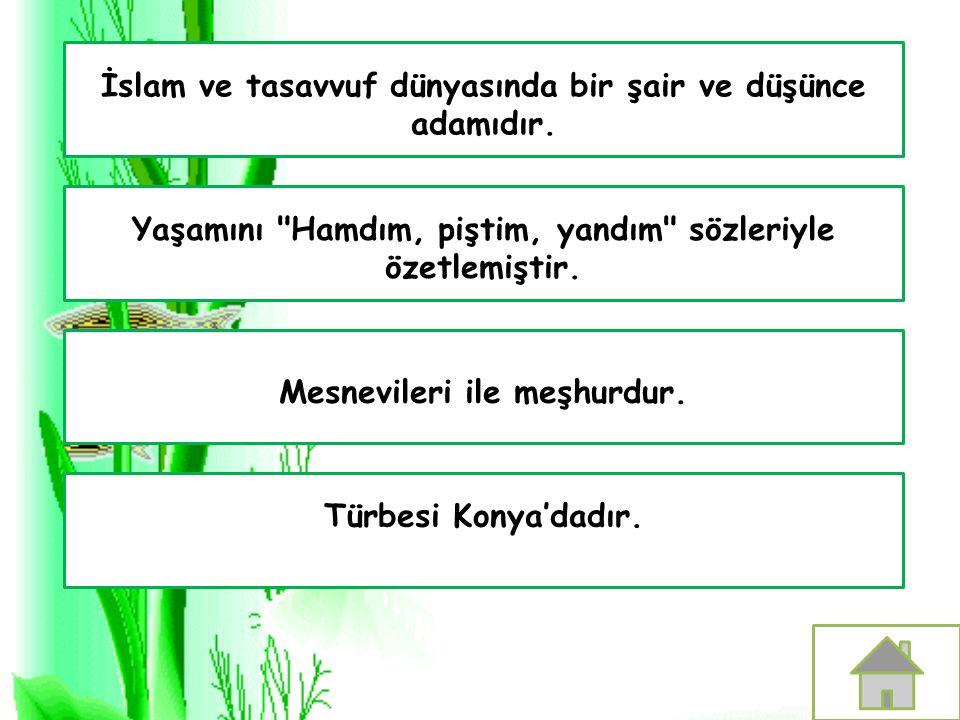 İslam ve tasavvuf dünyasında bir şair ve düşünce adamıdır. Türbesi Konya'dadır. Mesnevileri ile meşhurdur. Yaşamını
