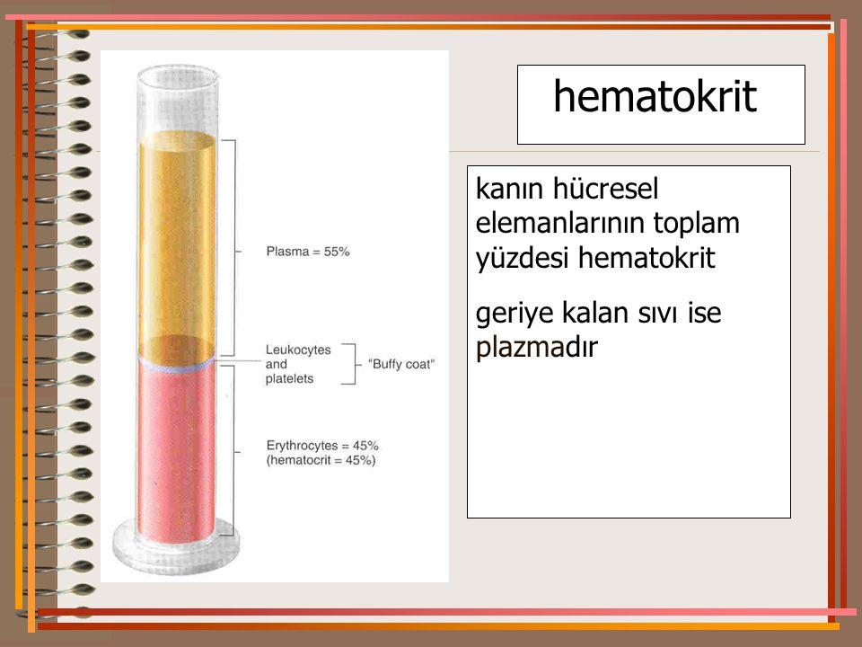 hematokrit kanın hücresel elemanlarının toplam yüzdesi hematokrit geriye kalan sıvı ise plazmadır