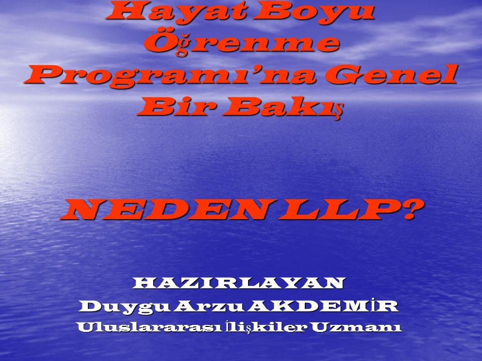 LLP NEDİR .