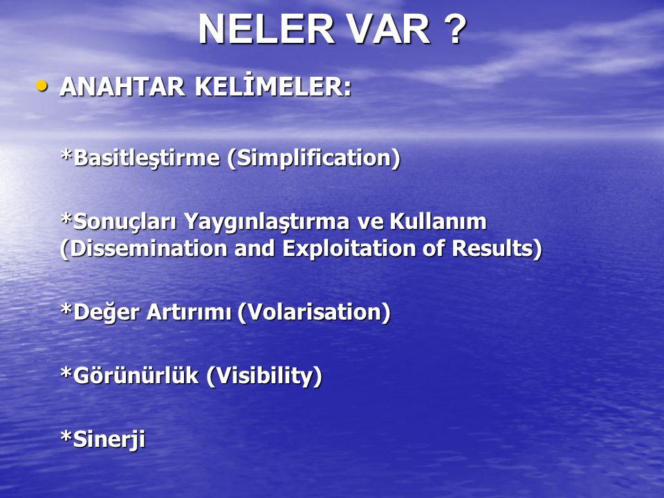 NELER VAR ? ANAHTAR KELİMELER: ANAHTAR KELİMELER: *Basitleştirme (Simplification) *Sonuçları Yaygınlaştırma ve Kullanım (Dissemination and Exploitatio