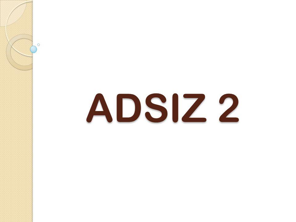 ADSIZ 2