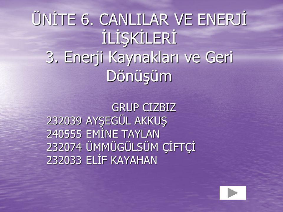 ÜNİTE 6.CANLILAR VE ENERJİ İLİŞKİLERİ 3.