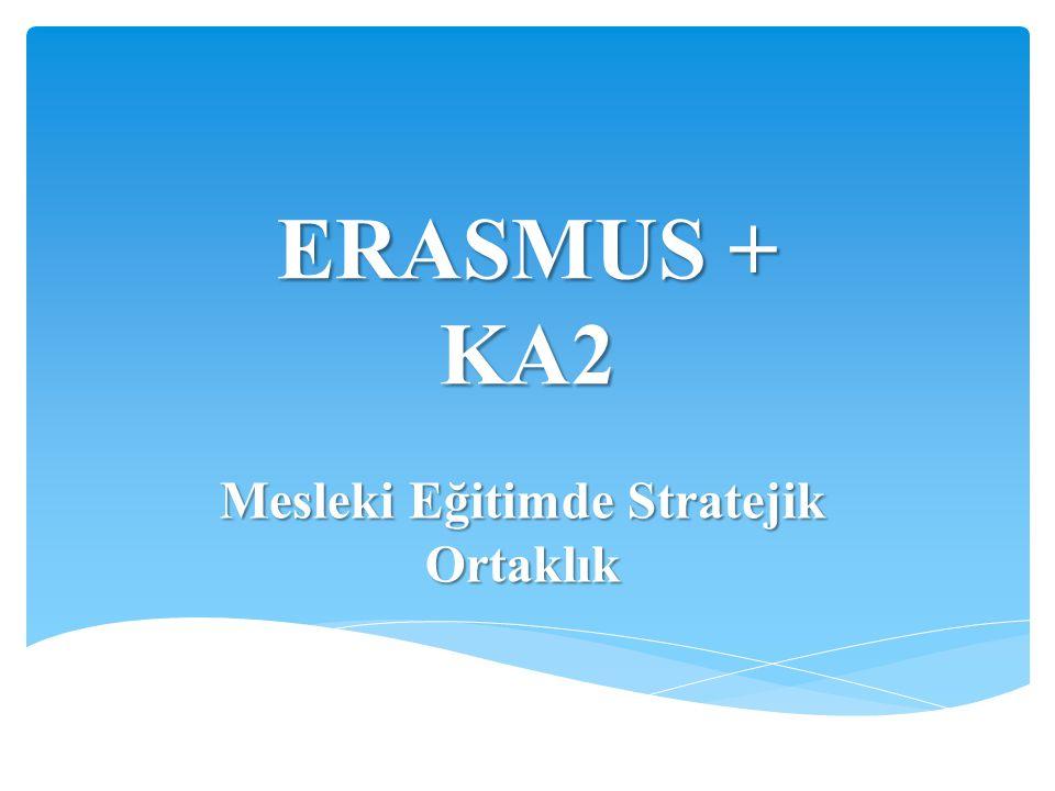 ERASMUS + KA2 Mesleki Eğitimde Stratejik Ortaklık