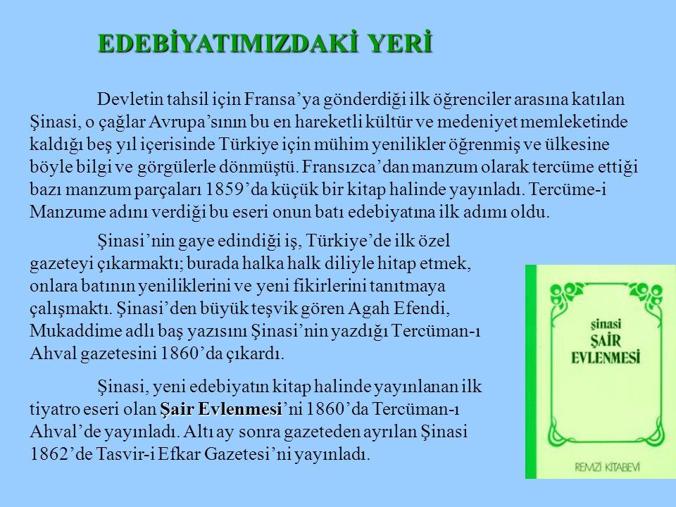Şinasi, dili canlı ve incelemeye layık bir madde gibi ele almış, İstanbul'a ilk dönüşünden Tasvir-i Efkar'ı çıkarttığı seneye kadar üzerinde çalışmıştır.