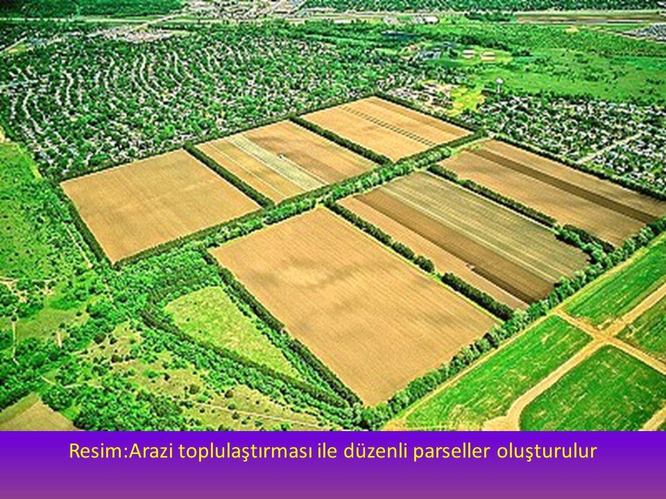 Resim:Arazi toplulaştırması ile düzenli parseller oluşturulur