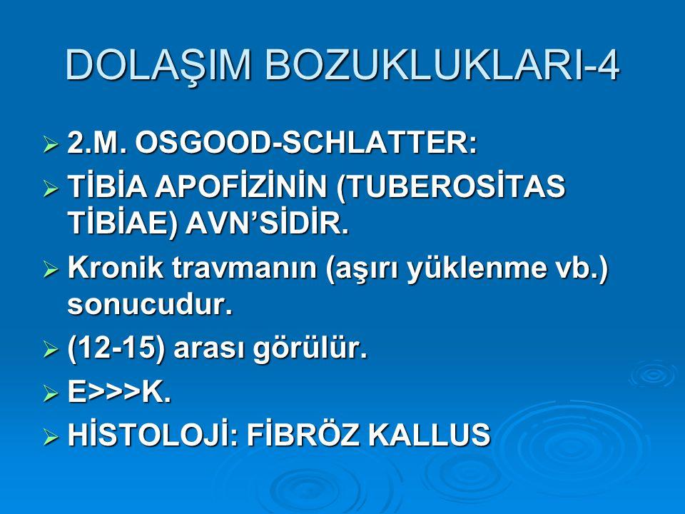 DOLAŞIM BOZUKLUKLARI-4  2.M. OSGOOD-SCHLATTER:  TİBİA APOFİZİNİN (TUBEROSİTAS TİBİAE) AVN'SİDİR.  Kronik travmanın (aşırı yüklenme vb.) sonucudur.