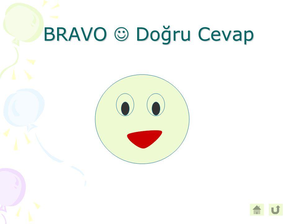 BRAVO Doğru Cevap