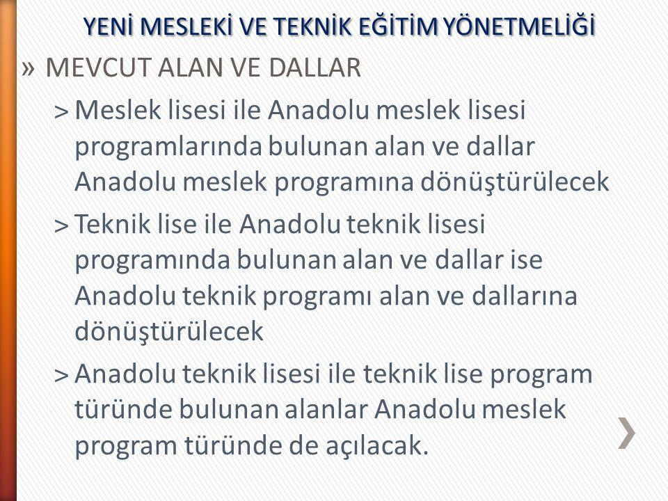 » MEVCUT ALAN VE DALLAR ˃Meslek lisesi ile Anadolu meslek lisesi programlarında bulunan alan ve dallar Anadolu meslek programına dönüştürülecek ˃Tekni