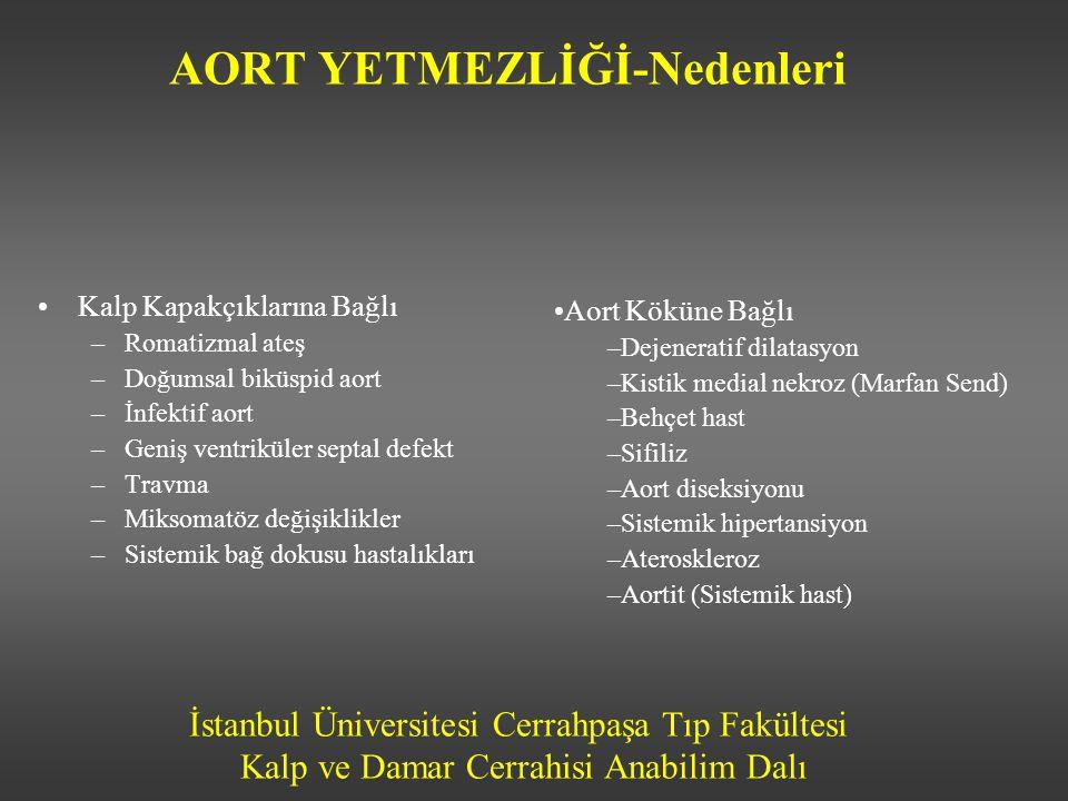 İstanbul Üniversitesi Cerrahpaşa Tıp Fakültesi Kalp ve Damar Cerrahisi Anabilim Dalı AORT YETMEZLİĞİ-Nedenleri Kalp Kapakçıklarına Bağlı –Romatizmal a