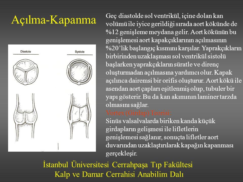 İstanbul Üniversitesi Cerrahpaşa Tıp Fakültesi Kalp ve Damar Cerrahisi Anabilim Dalı Semptomatik hastalar Çıkım yolu obstrüksiyonu ve ventriküler hipertrofi kardinal semptomlara yol açar Angina, senkop, konjestif kalp yetmezliği 4yıl, 3 yıl, 2 yıllık hayat beklentisi Semptomların başlangıcında ortalama aort kapak alanı 0.6 cm 2 /m 2 Semptomatik hastada ani ölüm > %10/yıl