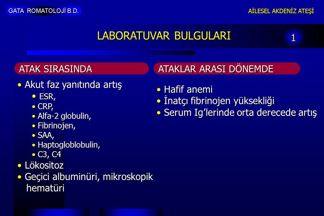 GATA ROMATOLOJİ B.D. AİLESEL AKDENİZ ATEŞİ LABORATUVAR BULGULARI 1 Akut faz yanıtında artış Akut faz yanıtında artış ESR, ESR, CRP, CRP, Alfa-2 globul