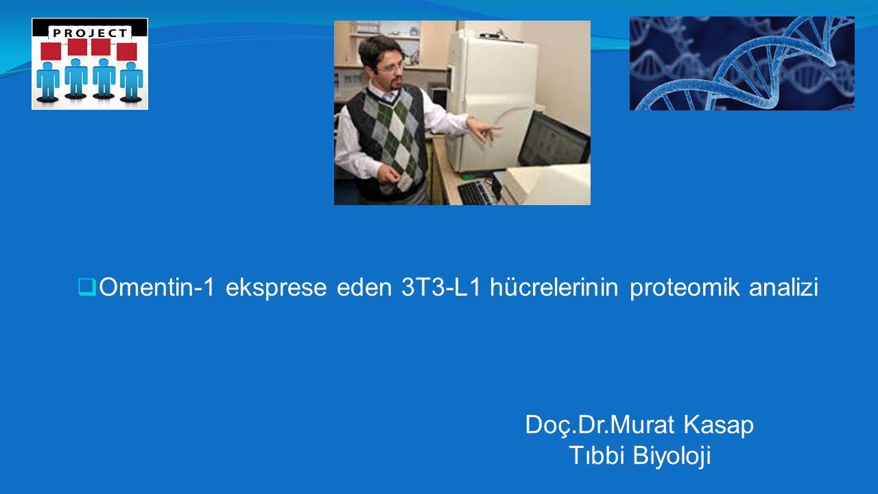  Omentin-1 eksprese eden 3T3-L1 hücrelerinin proteomik analizi Doç.Dr.Murat Kasap Tıbbi Biyoloji