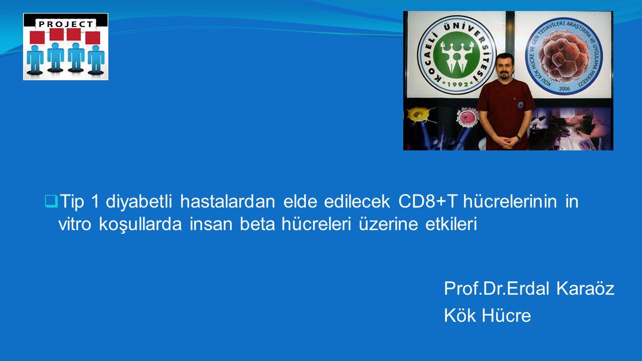  Tip 1 diyabetli hastalardan elde edilecek CD8+T hücrelerinin in vitro koşullarda insan beta hücreleri üzerine etkileri Prof.Dr.Erdal Karaöz Kök Hücre