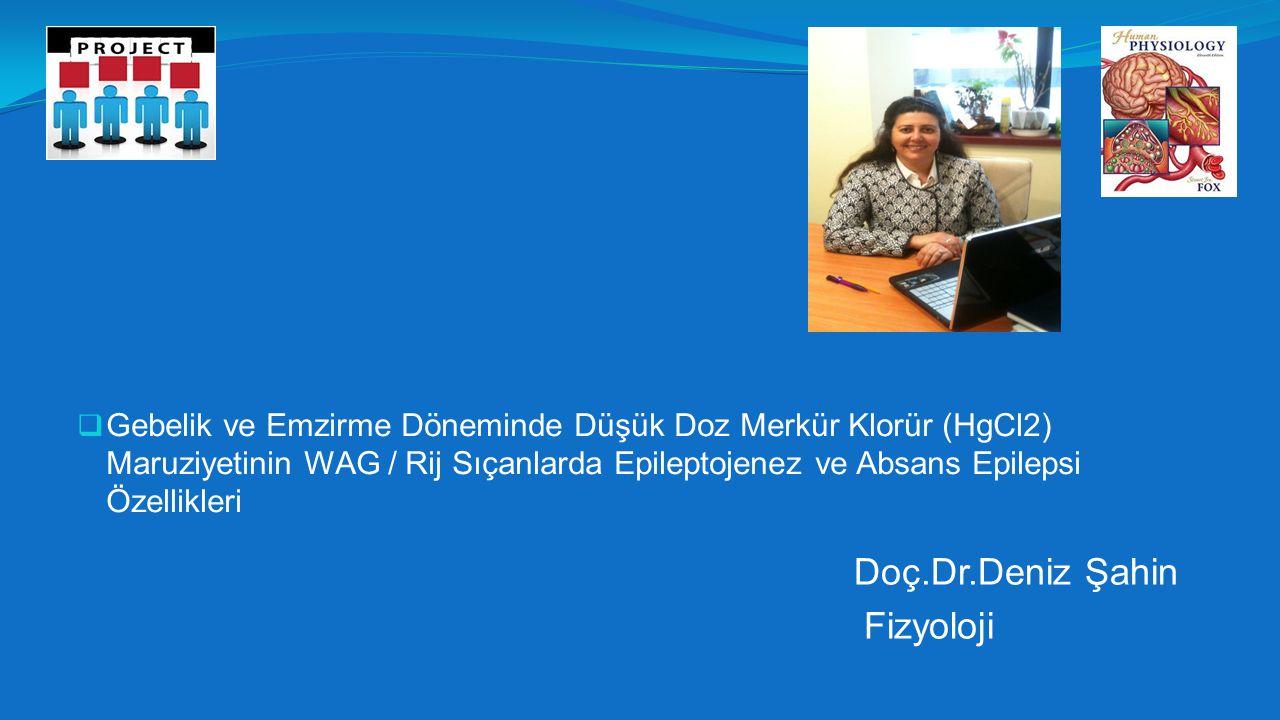  Gebelik ve Emzirme Döneminde Düşük Doz Merkür Klorür (HgCl2) Maruziyetinin WAG / Rij Sıçanlarda Epileptojenez ve Absans Epilepsi Özellikleri Doç.Dr.Deniz Şahin Fizyoloji