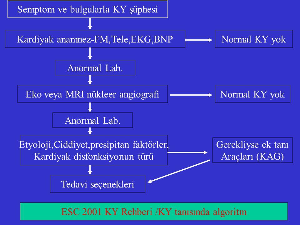 Semptom ve bulgularla KY şüphesi Kardiyak anamnez-FM,Tele,EKG,BNPNormal KY yok Anormal Lab. Eko veya MRI nükleer angiografiNormal KY yok Anormal Lab.