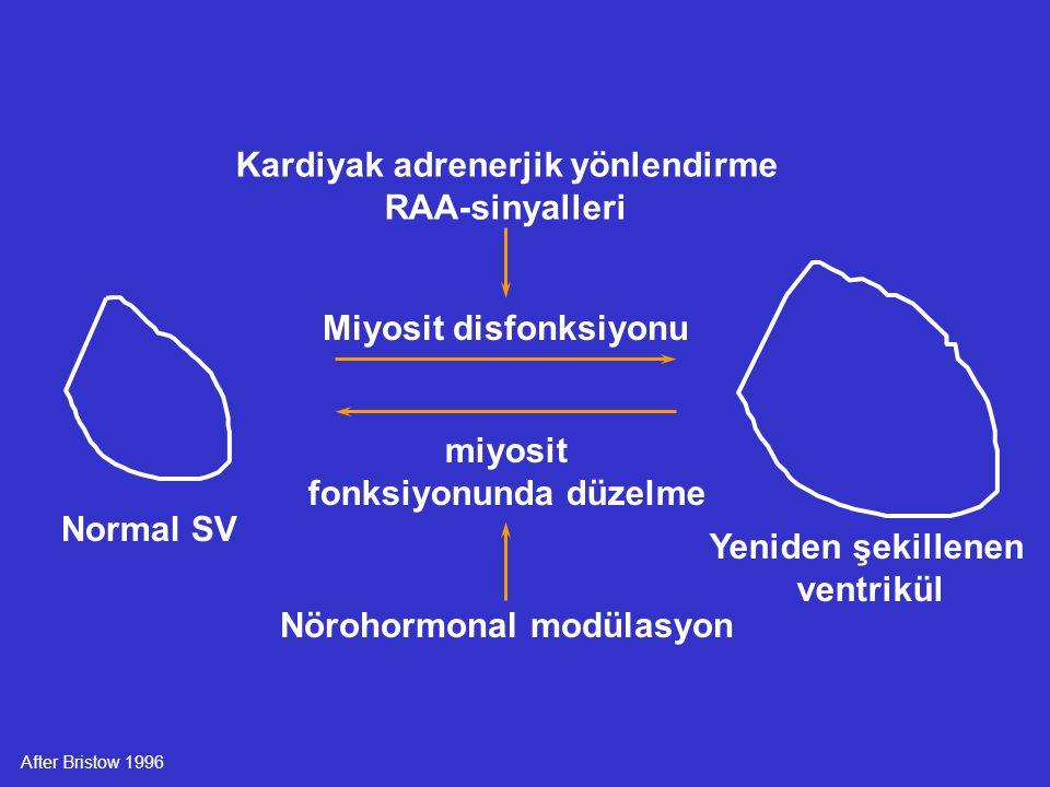 Normal SV Yeniden şekillenen ventrikül miyosit fonksiyonunda düzelme Miyosit disfonksiyonu Nörohormonal modülasyon Kardiyak adrenerjik yönlendirme RAA