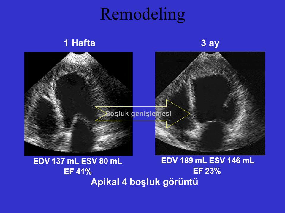 Remodeling 1 Hafta 3 ay EDV 137 mL ESV 80 mL EF 41% EDV 189 mL ESV 146 mL EF 23% Apikal 4 boşluk görüntü Boşluk genişlemesi