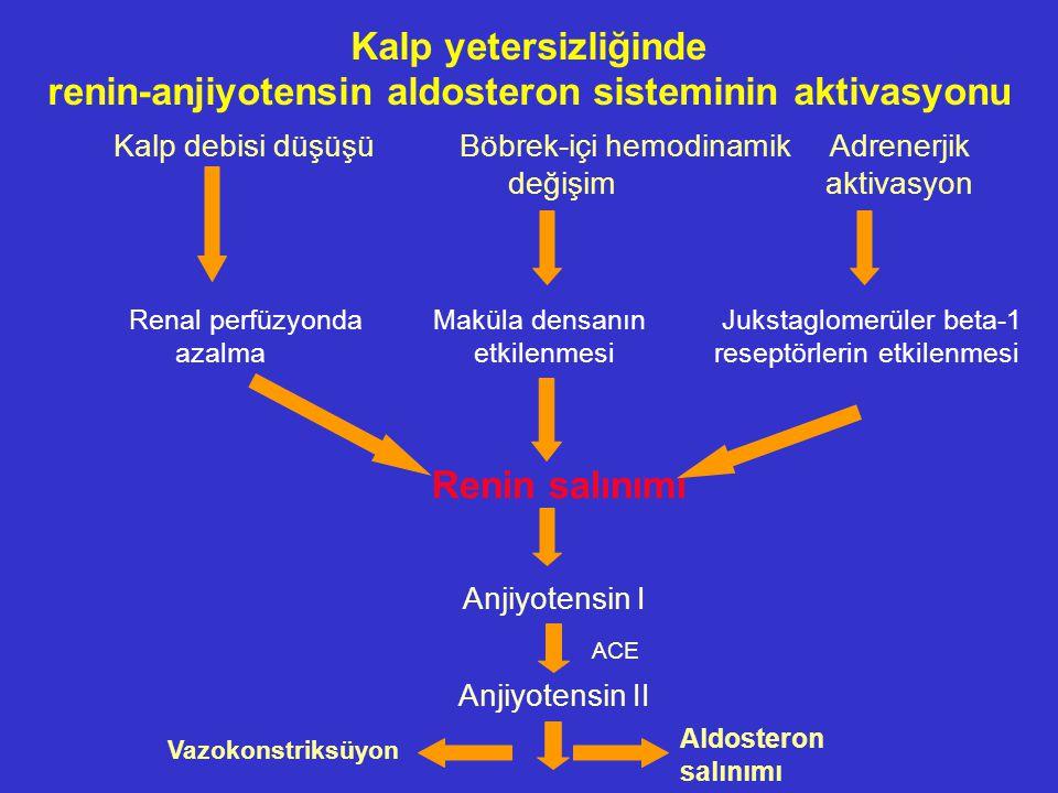 Kalp yetersizliğinde renin-anjiyotensin aldosteron sisteminin aktivasyonu Kalp debisi düşüşüBöbrek-içi hemodinamik Adrenerjik değişim aktivasyon Renal