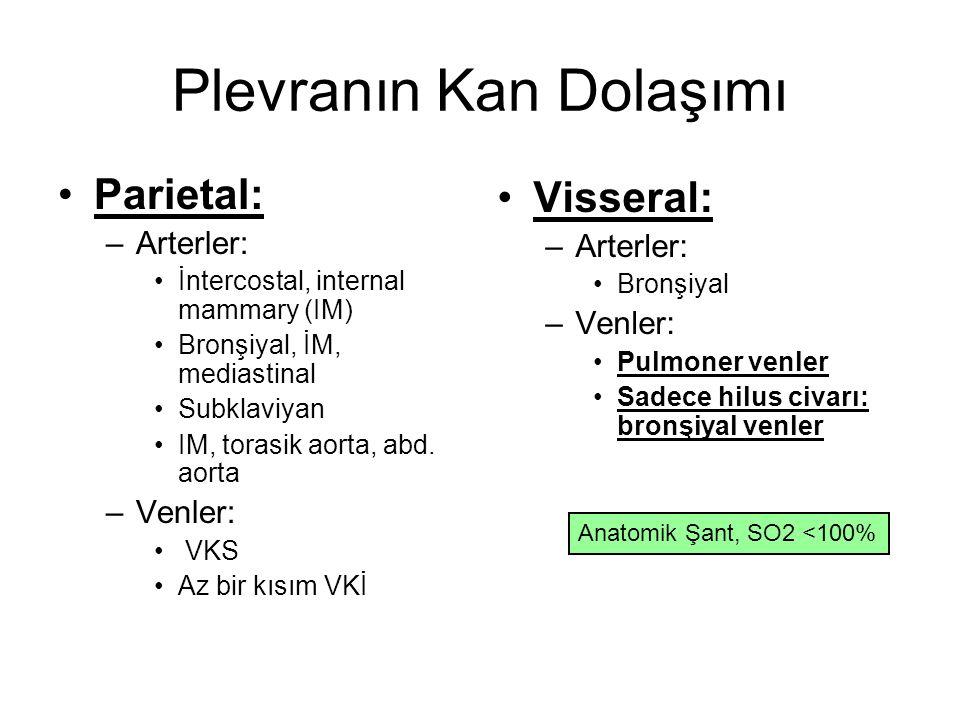 Plevranın Kan Dolaşımı Parietal: –Arterler: İntercostal, internal mammary (IM) Bronşiyal, İM, mediastinal Subklaviyan IM, torasik aorta, abd. aorta –V