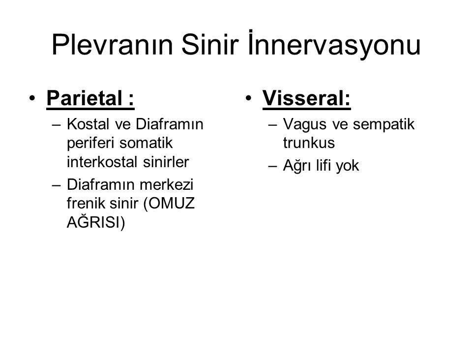 Plevranın Sinir İnnervasyonu Parietal : –Kostal ve Diaframın periferi somatik interkostal sinirler –Diaframın merkezi frenik sinir (OMUZ AĞRISI) Visse