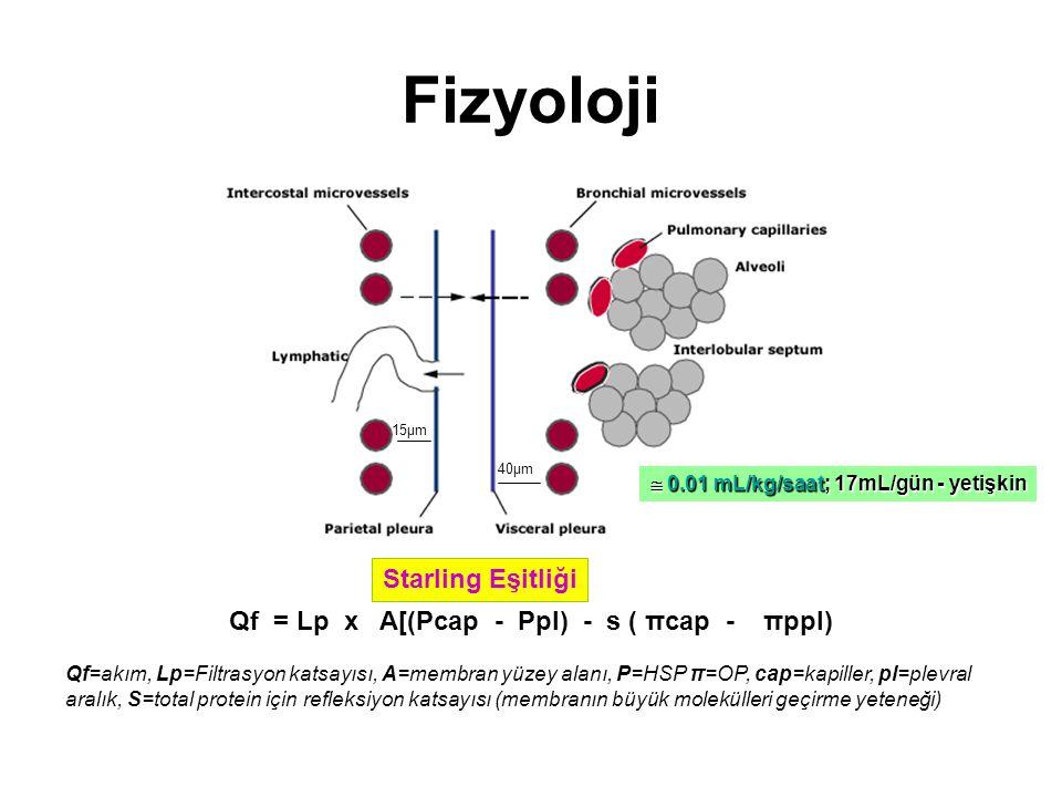 Fizyoloji Qf = Lp x A[(Pcap - Ppl) - s ( πcap - πppl) Qf=akım, Lp=Filtrasyon katsayısı, A=membran yüzey alanı, P=HSP π=OP, cap=kapiller, pl=plevral aralık, S=total protein için refleksiyon katsayısı (membranın büyük molekülleri geçirme yeteneği) Starling Eşitliği 15µm 40µm  0.01 mL/kg/saat; 17mL/gün - yetişkin