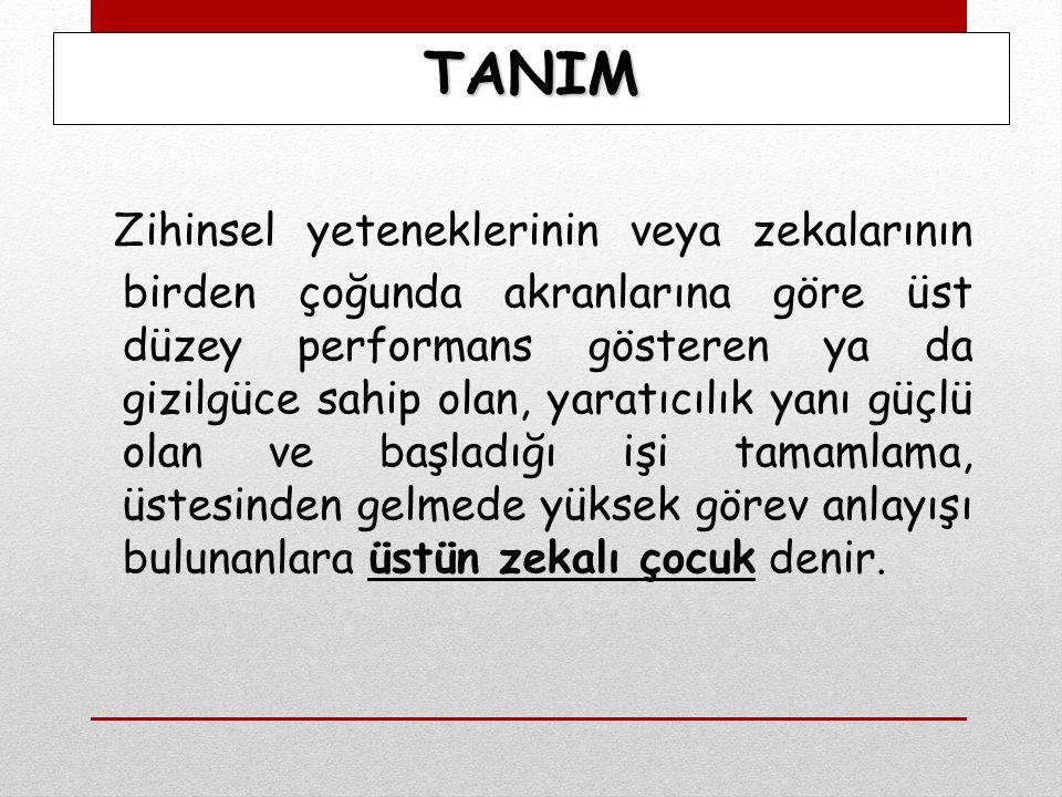 ÜSTÜN YETENEKLİ ÇOCUKLARIN SORUNLARI 11.
