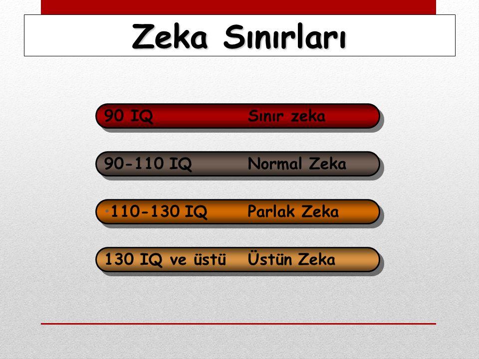 Zeka Sınırları 90 IQ Sınır zeka 90-110 IQ Normal Zeka 110-130 IQ Parlak Zeka 130 IQ ve üstü Üstün Zeka