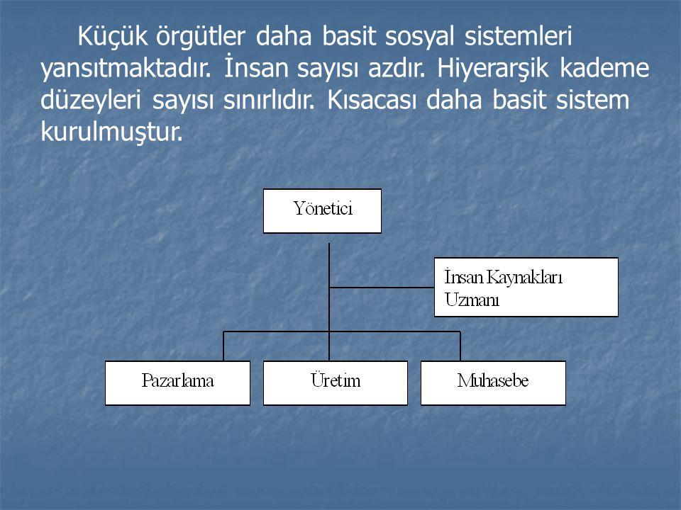 Küçük örgütler daha basit sosyal sistemleri yansıtmaktadır. İnsan sayısı azdır. Hiyerarşik kademe düzeyleri sayısı sınırlıdır. Kısacası daha basit sis