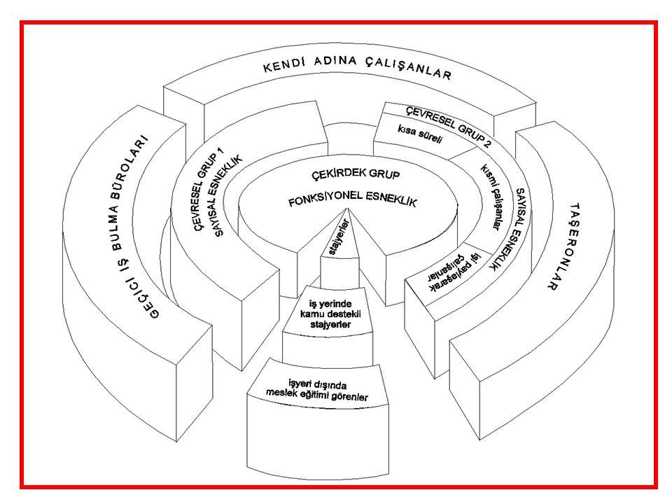 6 Temel Esnek Çalışma Biçimleri  İşlevsel Esneklik… (Aynı kişinin farklı işleri yapabilmesi)  Sayısal Esneklik… (Daha az kişi ile daha çok iş yapmak)  Çalışma Sürelerinde Esneklik… (Çalışma zamanının esnek kullanımı)  Ücret Esnekliği… (Performansa ve cinsiyete göre ücret)  Uzaklaştırma Stratejileri… (mal ya da hizmet üretiminin 'dışarıdan hizmet satın alma' yoluyla üçüncü şahıslara gördürülmesi)…