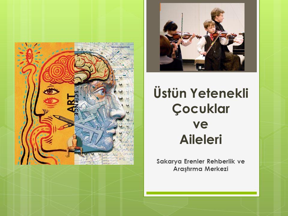 Türkiye'de Üstün Yetenekli Çocukların Eğitsel Değerlendirme/Tanılama ve Yerleştirme Süreci İzleme BEP hazırlama Yerleştirme-yönlendirme Ayrıntılı değerlendirme Başvuru süreci Başvuru öncesi süreç Tarama - ilk belirleme süreci
