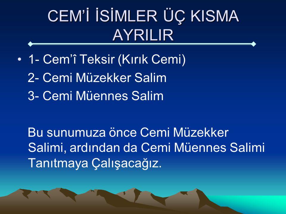 Cemi Müzekker Salim Nedir.