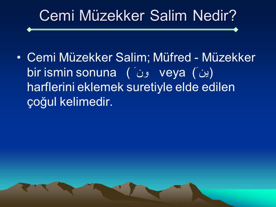 Cemi Müzekker Salim Nedir? Cemi Müzekker Salim; Müfred - Müzekker bir ismin sonuna ون َ ) veya (ين َ) harflerini eklemek suretiyle elde edilen çoğul k