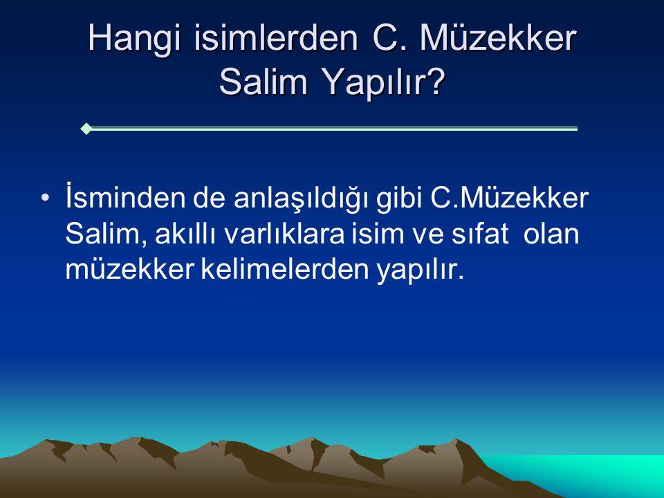 Hangi isimlerden C. Müzekker Salim Yapılır? İsminden de anlaşıldığı gibi C.Müzekker Salim, akıllı varlıklara isim ve sıfat olan müzekker kelimelerden