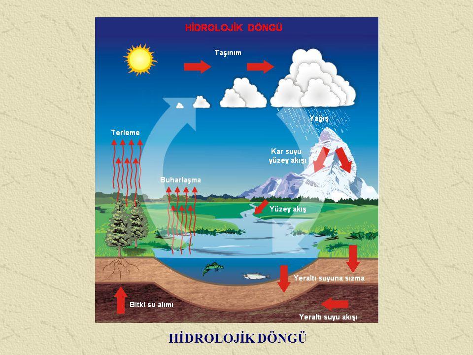 Yeryüzünde su bulunan her yüzey, atmosferdeki su buharının kaynağıdır.