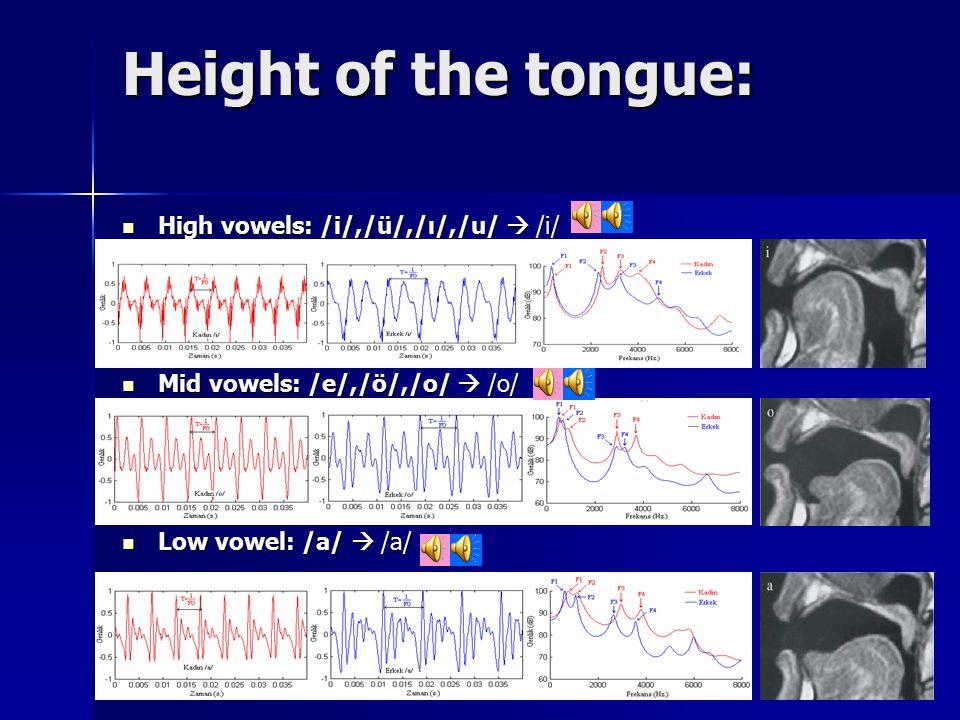 Height of the tongue: High vowels: /i/,/ü/,/ı/,/u/  /i/ High vowels: /i/,/ü/,/ı/,/u/  /i/ Mid vowels: /e/,/ö/,/o/  /o/ Mid vowels: /e/,/ö/,/o/  /o/ Low vowel: /a/  /a/ Low vowel: /a/  /a/