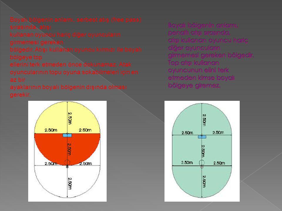 Boyalı bölgenin anlamı, serbest atış (free pass) sırasında, atışı kullanan oyuncu hariç diğer oyuncuların girmemesi gereken bölgedir. Atışı kullanan o