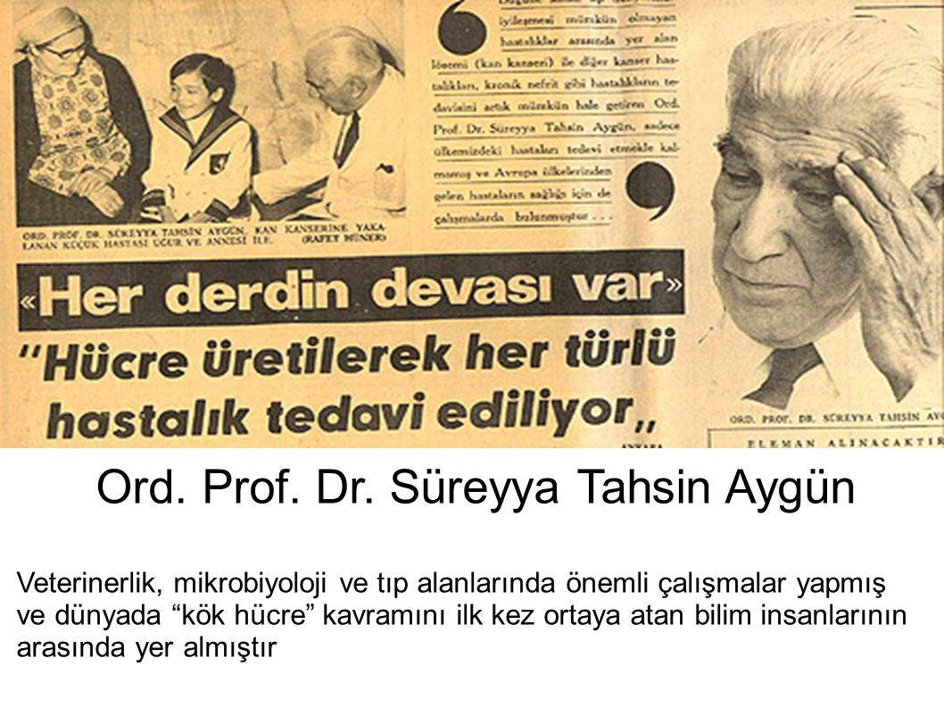 """Ord. Prof. Dr. Süreyya Tahsin Aygün Veterinerlik, mikrobiyoloji ve tıp alanlarında önemli çalışmalar yapmış ve dünyada """"kök hücre"""" kavramını ilk kez o"""