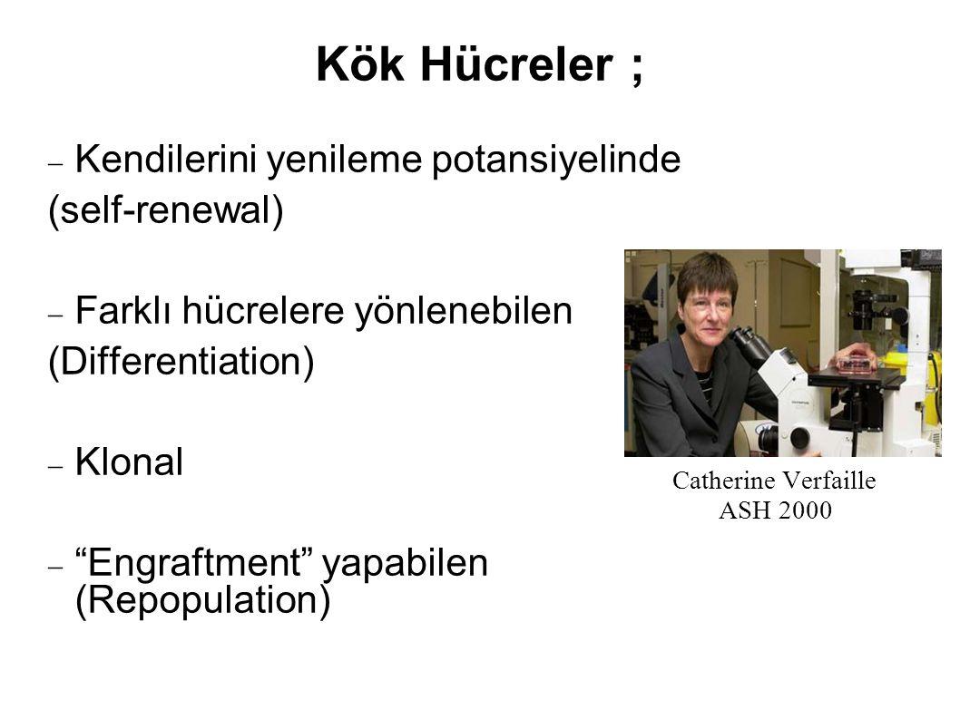 """Kök Hücreler ;  Kendilerini yenileme potansiyelinde (self-renewal)  Farklı hücrelere yönlenebilen (Differentiation)  Klonal  """"Engraftment"""" yapabil"""