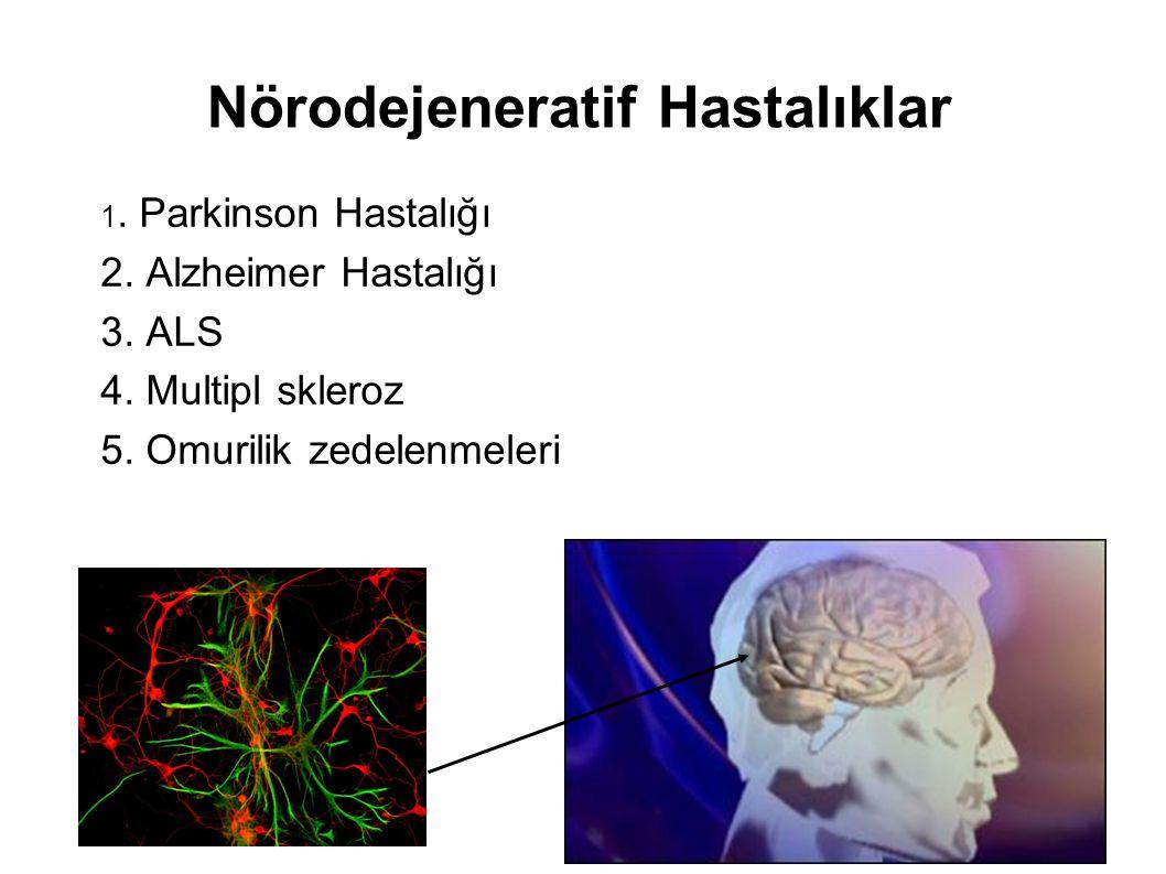 Nörodejeneratif Hastalıklar 1. Parkinson Hastalığı 2. Alzheimer Hastalığı 3. ALS 4. Multipl skleroz 5. Omurilik zedelenmeleri