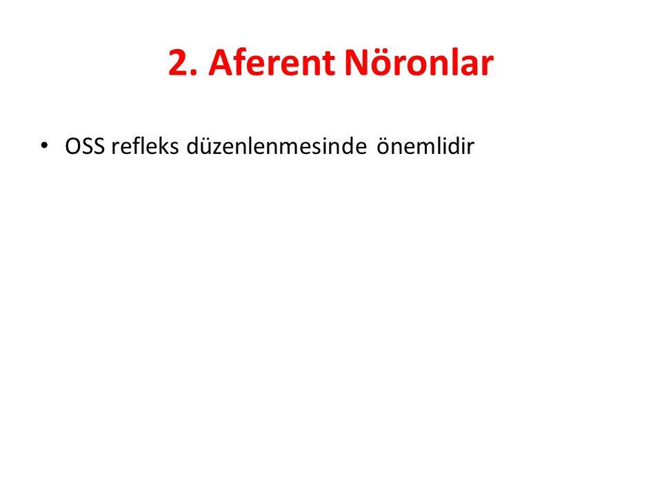 2. Aferent Nöronlar OSS refleks düzenlenmesinde önemlidir