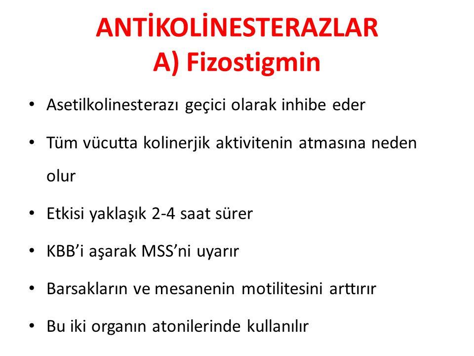 ANTİKOLİNESTERAZLAR A) Fizostigmin Asetilkolinesterazı geçici olarak inhibe eder Tüm vücutta kolinerjik aktivitenin atmasına neden olur Etkisi yaklaşı